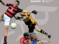 Cork GAA Yearbook 2012