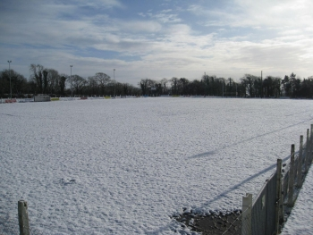 Field full of snow